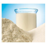 Milk Powder (skimmed milk)