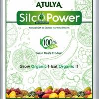 Silco Power - Natural way
