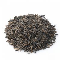 Ethiopia Niger Seeds