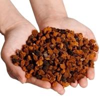 Dried Chaga Mushroom Chaga Chunks