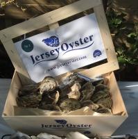 "Jersey Oysters(Crassostrea gigas) ""ASC"""
