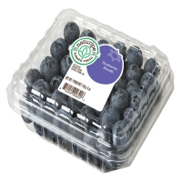 Fresh Tasty & Healthy - Blueberries Conventional