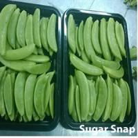 Sugar Snap