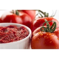Tomato Paste (Cold Break & Hot Break)