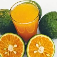 Fresh Orange (King Orange)