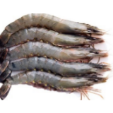 Frozen Seafood - Tiger Prawn