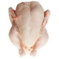 Frozen chicken ,pork,tendon