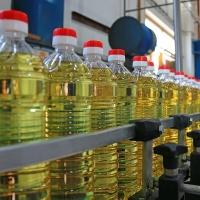 100% Pure Refined Canola Oil/ Rapeseed Oil