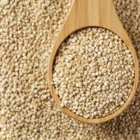 Quinoa For Sale