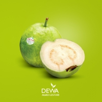 Crystal Guava