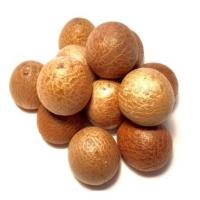 Dried Processed Betel Nuts