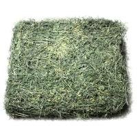 Wholesale Alfalfa Hay