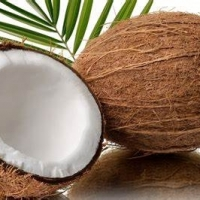 Extra Virgin Coconut Oil ( All Coconut Products)