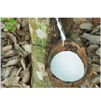 Natural Liquid Latex Rubber