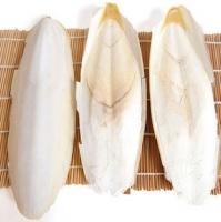 Dried Cuttle Fish Bone
