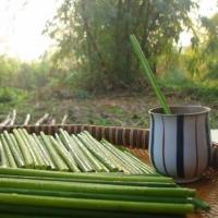 Drinking Grass Straw Eco Friendly