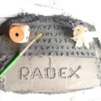 Insulation Refractories Powder RADEX
