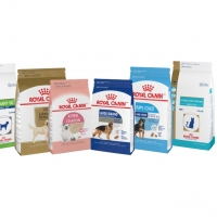 Wholesale Royal Canin Pet Food