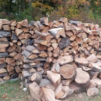 Firewood / Eucalyptus Braii Wood