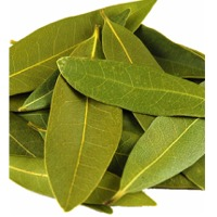 Organic Bay Leaf Oil