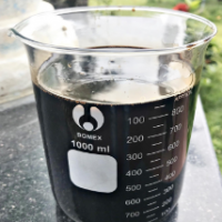 Cashew Nut Shell Liquid (cnsl)