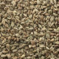 Ajwain Seed / Carom Seeds