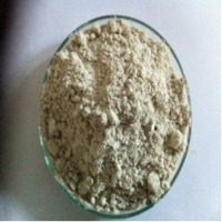 Guar Gum Powder Dust