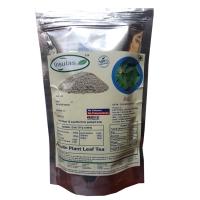 Insulin Leaf Tea (Costus Pictus/Spiral Ginger)