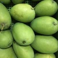 Banganapalli (Benishan) Mango