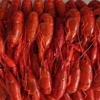 Cooked Frozen Crayfish