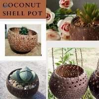Coconut Shell Pot From Vietnam
