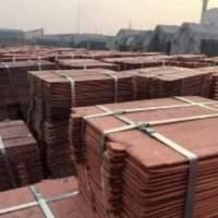 Copper Cathode Cu 99.99%.