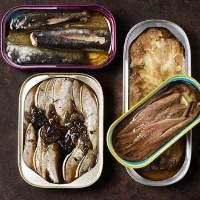 Sardine Fish/Canned Fish /Mackerel