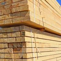 Pine Wood Poles For Construction And Furniture