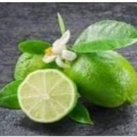 Frozen Lime/seedless Lime
