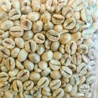 Robusta Peaberry Grade 1 SCAA Specialty