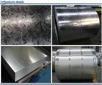Galvanized Iron Steel Sheet in Coil Steel Sheet